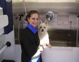 Dog Grooming Douglasville Georgia